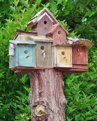 Cool Baumstumpf Vogelhaus