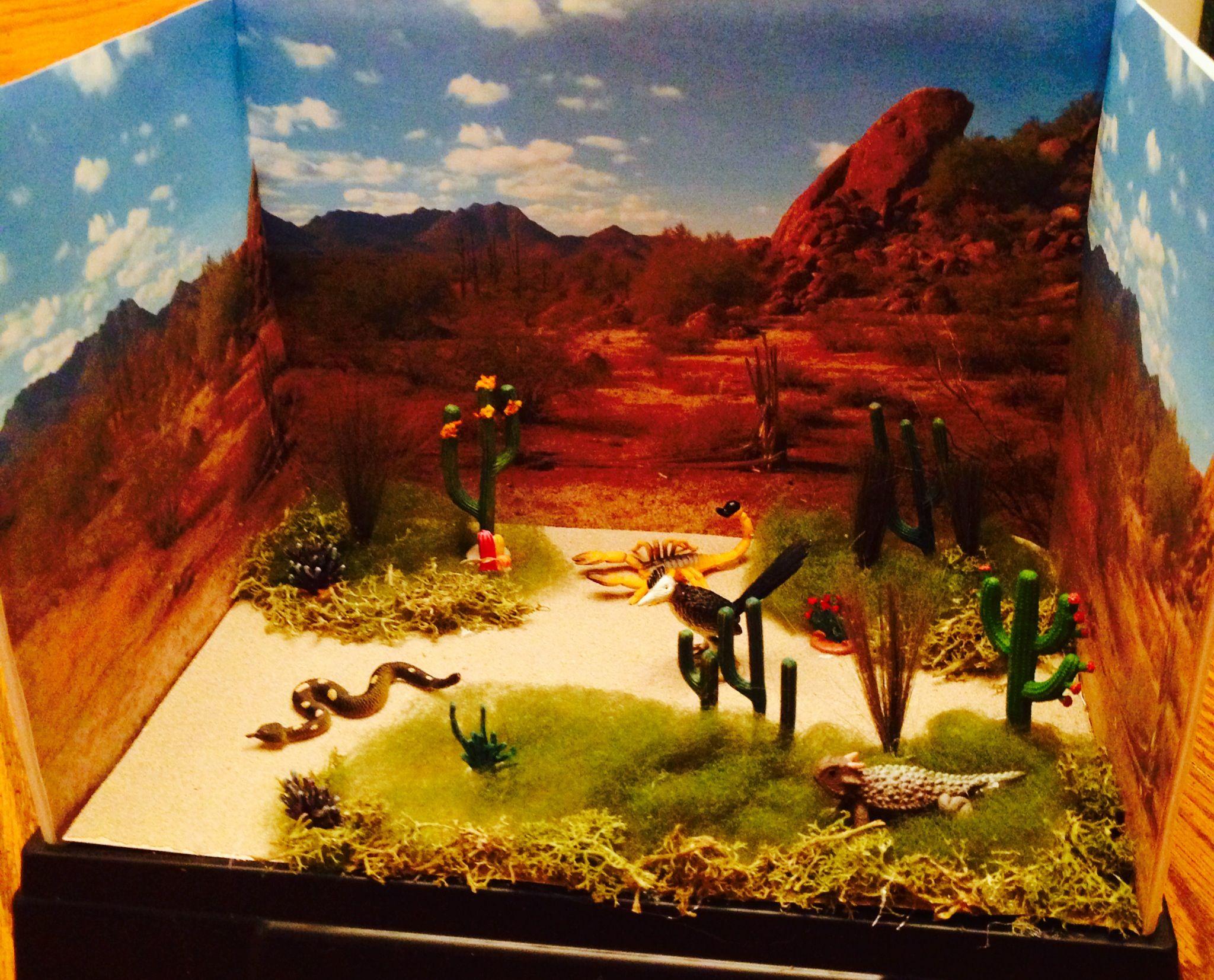 3d School Projects Desert Diorama Habitats Projects Ecosystems Diorama [ 1653 x 2048 Pixel ]