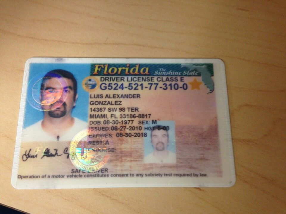 Luis drivers license Drivers license, Florida sunshine