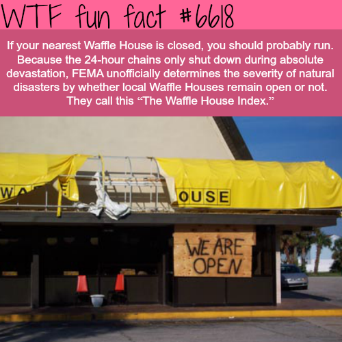 The Waffle House Index Wtf Fun Facts Fun Facts Wtf Fun Facts Funny Facts