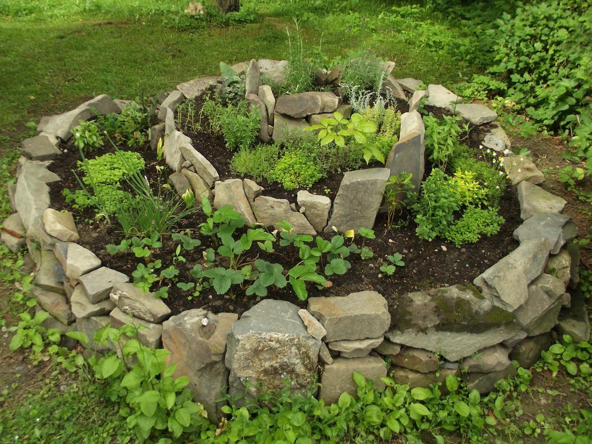 Bylinkova Spirala I S Jahodami Zdroj Obrazku Http Fka82 Rajce Idnes Cz Bylinkova Spirala Dscf2040 Jpg Planting Plan Plants Spiral Garden