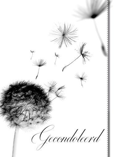 gecondoleerd | kaart bloompost | r e a s o n s - to send