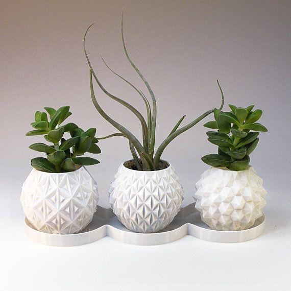 Mini Planter Gift Box Succulent Planters Set Small Indoor Plant