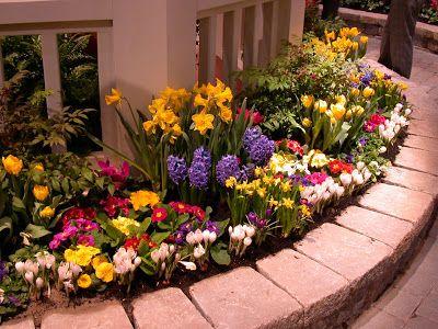 Arte y jardiner a dise o de jardines arriates - Plantas para arriates ...