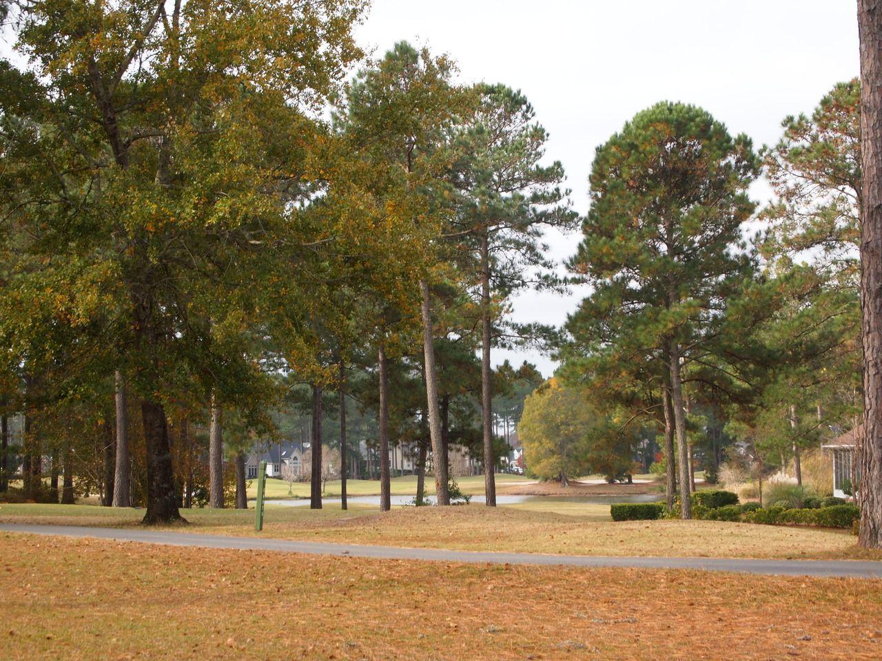 Pin on Brunswick Plantation Golf Course