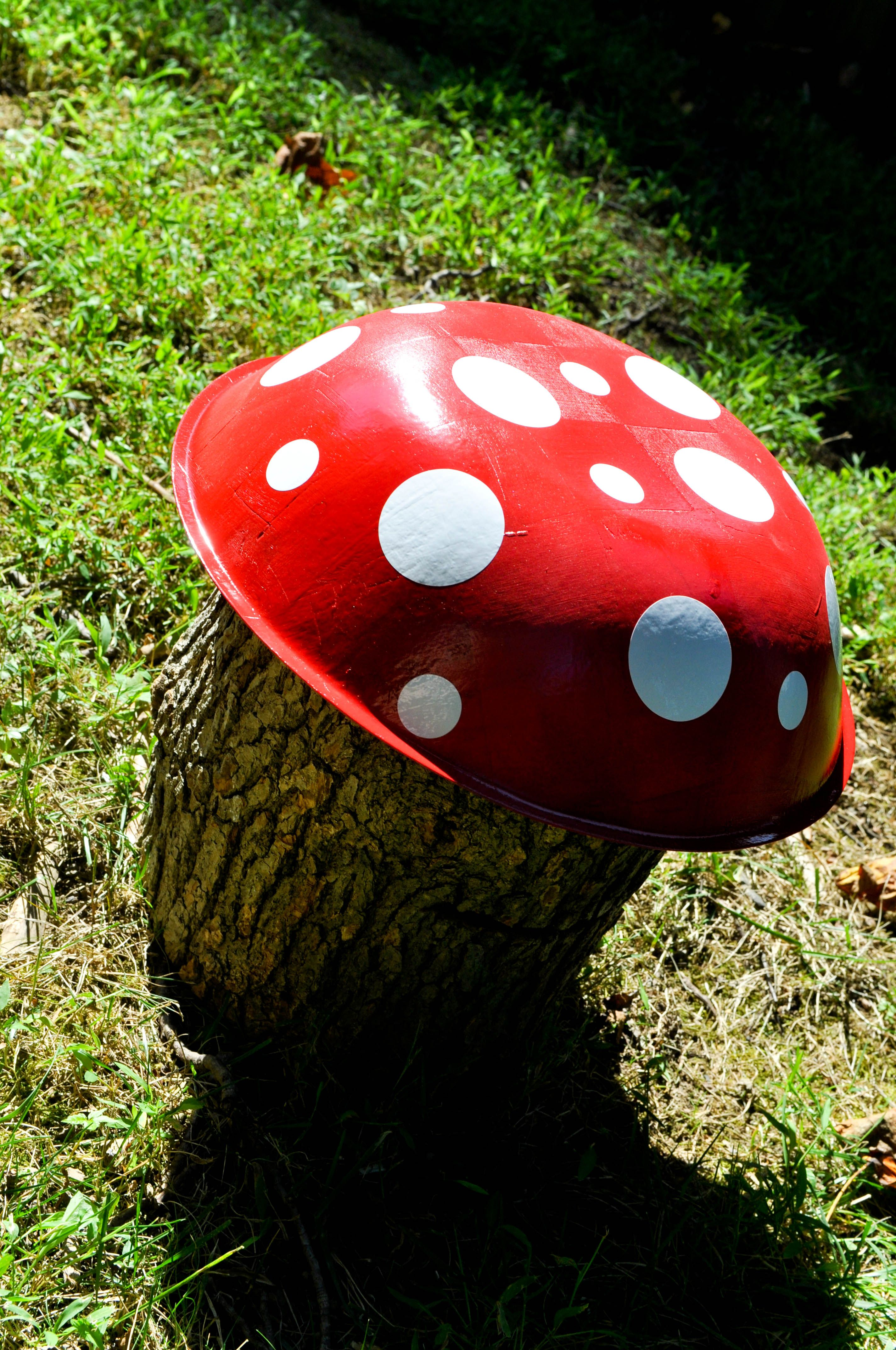 log toadstool backyard camping party decorations camping game