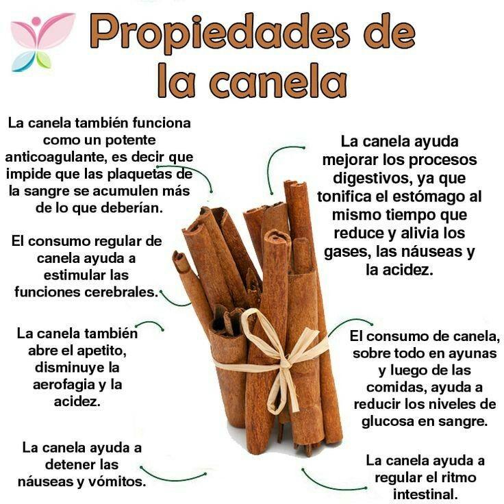 cuales son las propiedades nutritivas de la canela