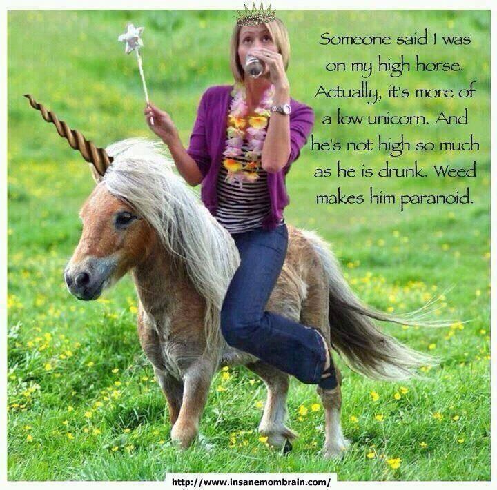 Unicorns, Horse And Humor