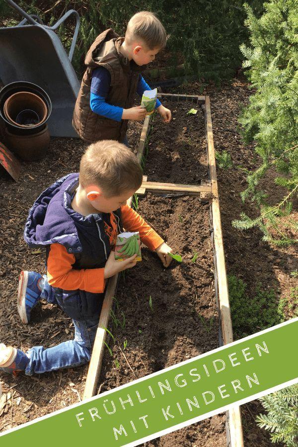 Frühling entdecken: Ideen mit Kindern für draußen #gemüsepflanzen