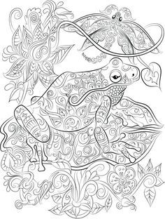 Frog On A Lily Pad Instant Digital Download Coloring Pages Frog
