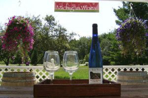 Southern Michigan is widely renowned for wine tours. Discover some of the famous wineries and vineyards of this place.