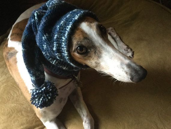 Pointed Hat with Snood for Greyhound fair isle pattern | Bambi ...