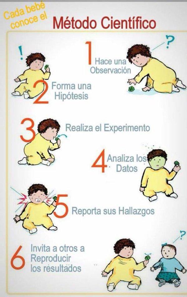 Cada Bebe Conoce El Metodo Cientifico Metodo Cientifico Chistes De Ciencia Metodos De Investigacion