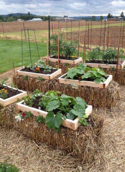 23  ideas garden beds ideas straw bales  garden