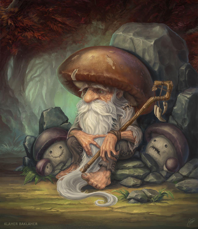 Дерущиеся грибы картинки