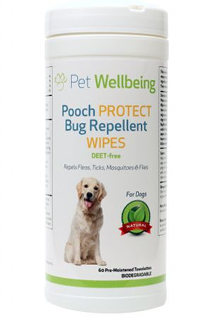 Natural Flea Treatment For Dogs Nz