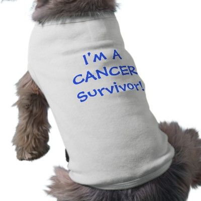 I'm A Cancer Survivor! Dog Tee  Did Your Dog Beat Cancer? Let them wear the fact proudly with this cute Tee