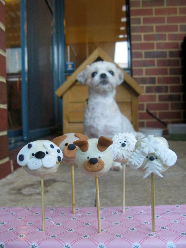 Dog cake pops. Haven't tried making cake pops--need to do that when the boys are here BUT I need an eggless recipe for Cole,