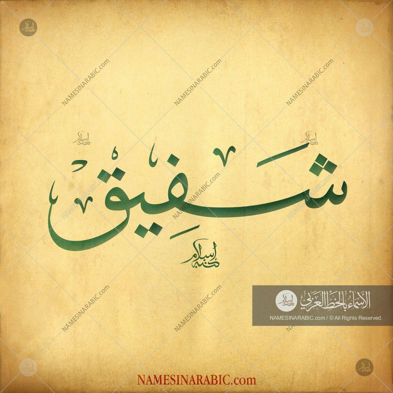 Shafiq شفيق names in arabic calligraphy name 3384 – Artofit