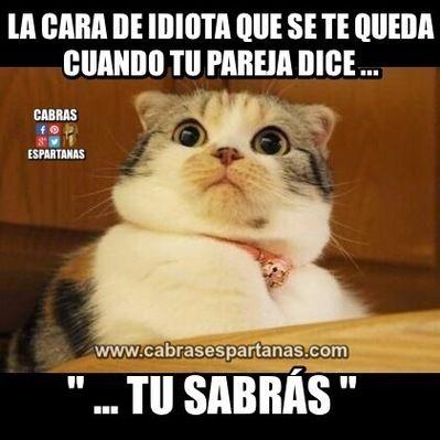 Cara De Idiota Cuando Te Dicen Xd Pinterest Memes Humor And