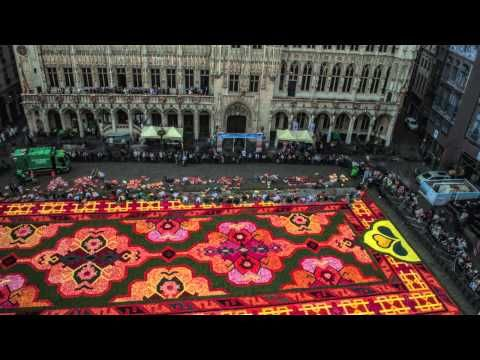 Time lapse video of the creation of Le Tapis de Fleur - Flower Carpet - Bruxelles 2014 - YouTube