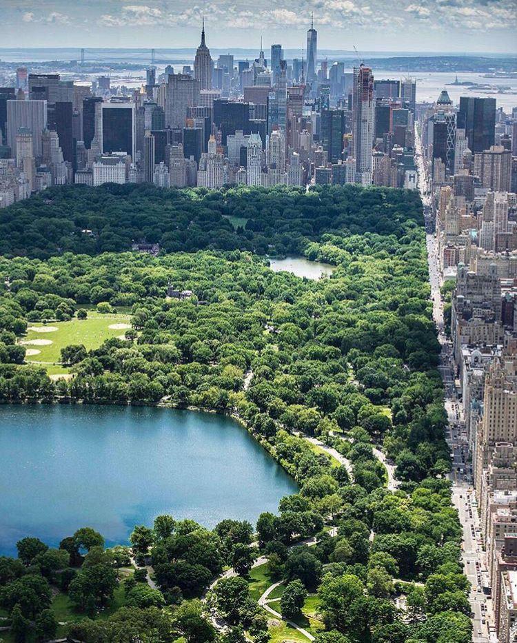 Central Park Apartments New York: New York City Central Park, New