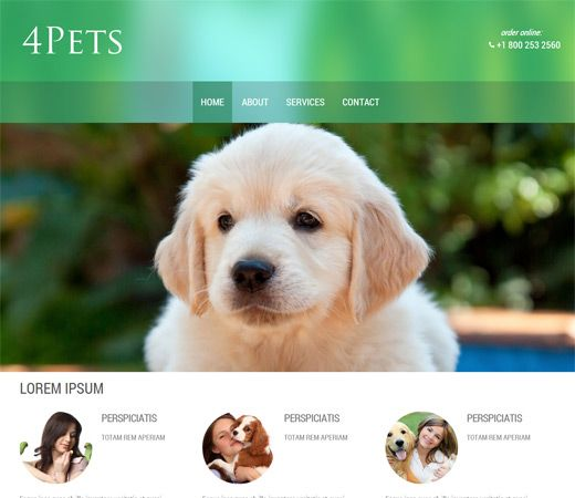 4pets A Animals And Pets Mobile Website Template By Golden Retriever Puppy Cute Puppies Dogs Golden Retriever