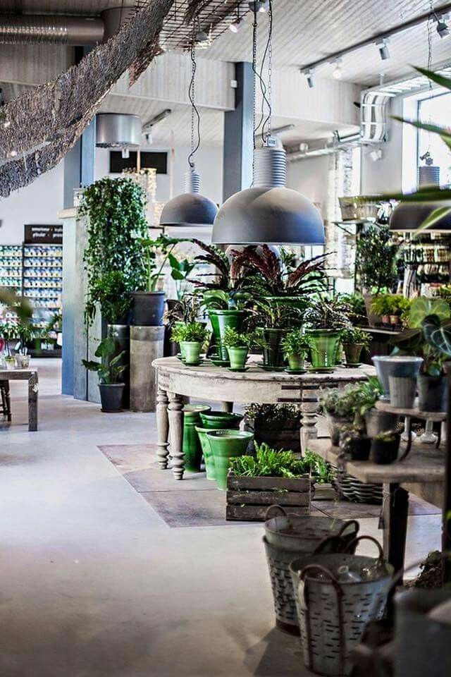 Pin by 翌辰 謝 on flower shop Flower shop interiors, Flower