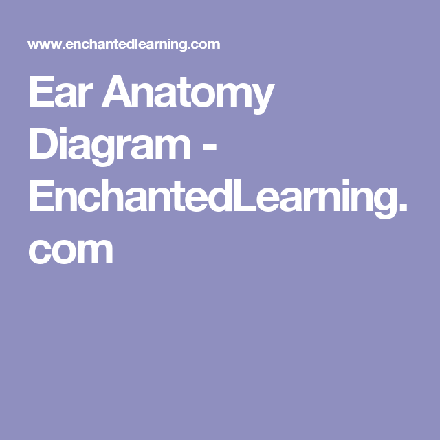 Enchanted Learning Ear Diagram Download Wiring Diagrams
