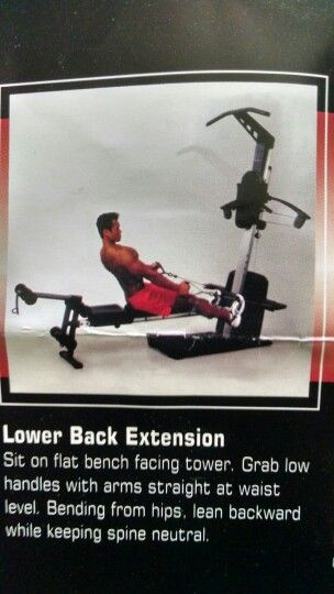 Lower Back Extension Weider Crossbow Exercises At Home Gym