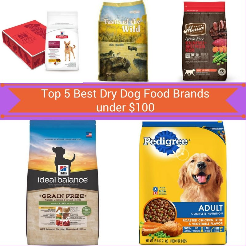 Here Is Your Exclusive List Of Top 5 Best Dry Dog Food Brands Under