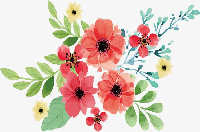 Pink Watercolor Flowers Vector Png Watercolor Plants Watercolor
