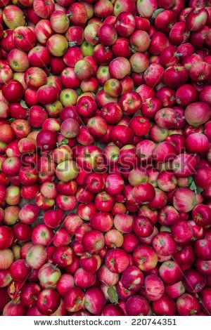 bilk apples - Google Search