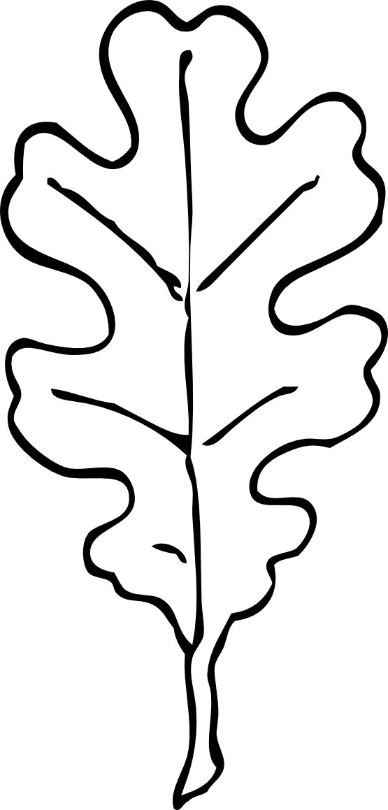 coloring pages oak leaf - photo#20