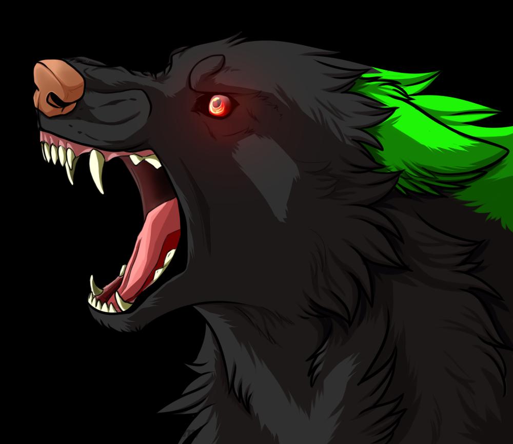 Pcm Starfire By Zulei1010 On Deviantart Dog Drawing Anime Wolf Canine Art