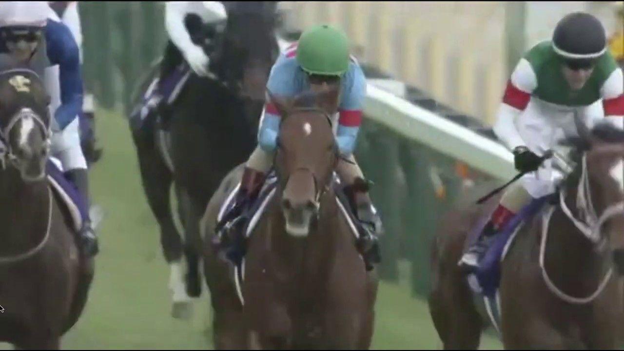 競馬 g1