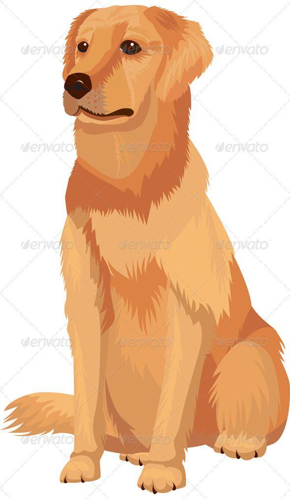 Labrador Retriever Dog Breed Golden Retriever Illustration