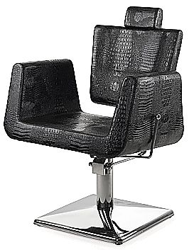 Hydraulic AllPurpose Chair for ideal for any salon barbershop