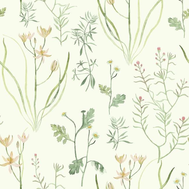 22 sage green aesthetic wallpaper ideas