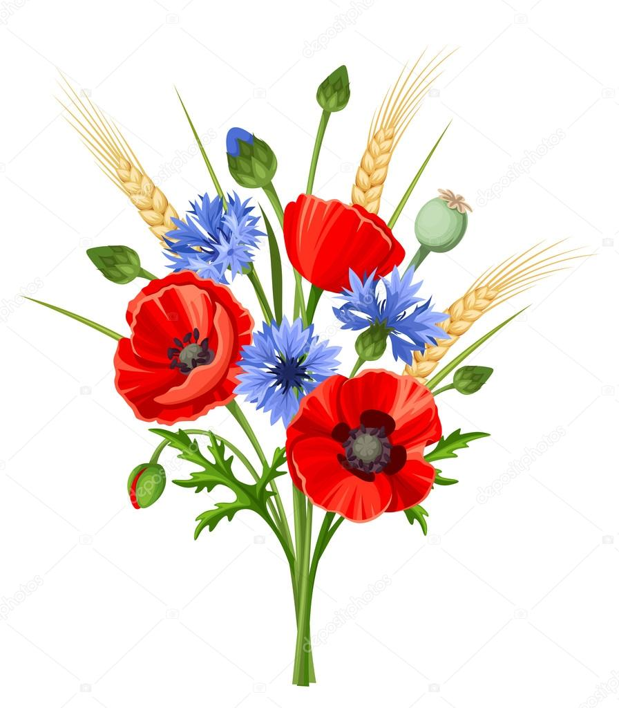Vector bouquet of red poppy flowers, blue cornflowers and