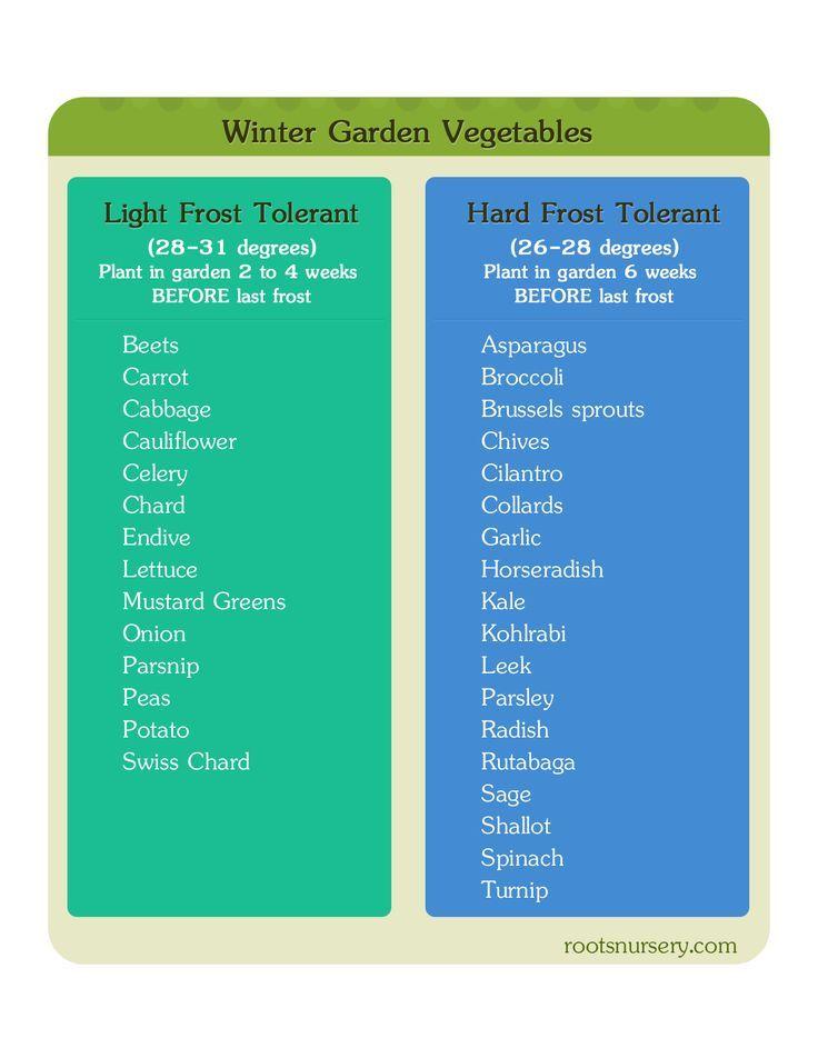 Winter Garden Vegetable Starter Chart: