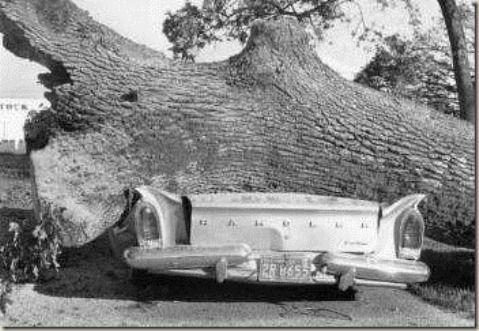 The Columbus Day Storm Of 1962 Began As Typhoon Freda Oregon Trail Oregon Downtown Portland