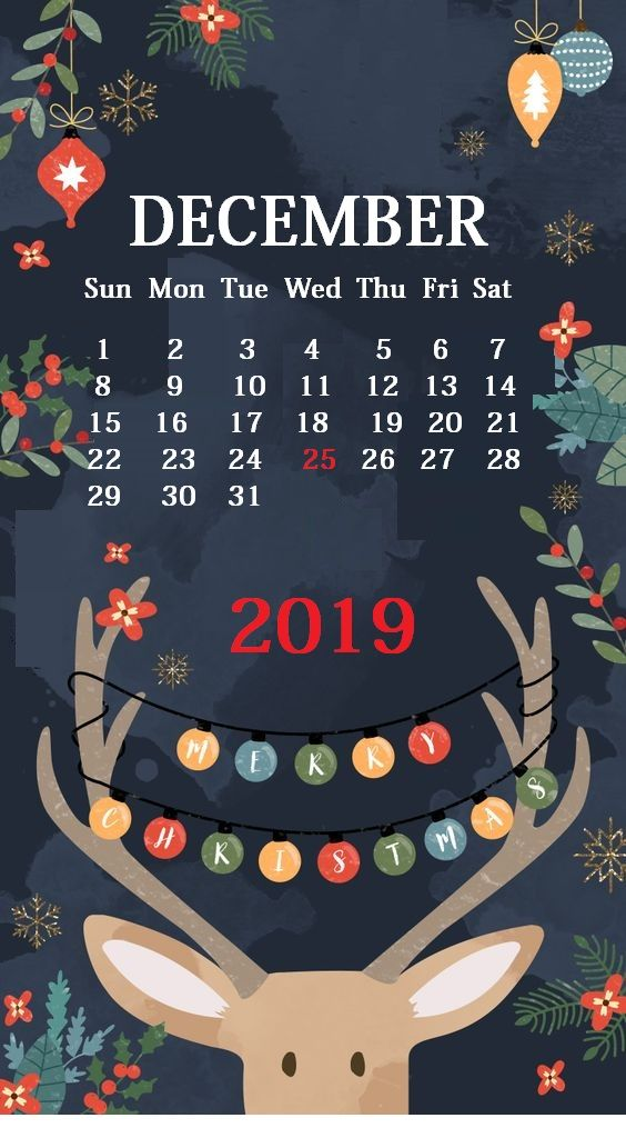 Cute iPhone December 2019 Calendar Background Wallpaper