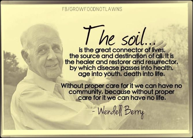 explain the poem by wendell berry the mad farmer liberation front A poem by wendell berry manifesto: the mad farmer liberation front love the quick profit, the annual raise, vacation with pay want more of everything ready-made.
