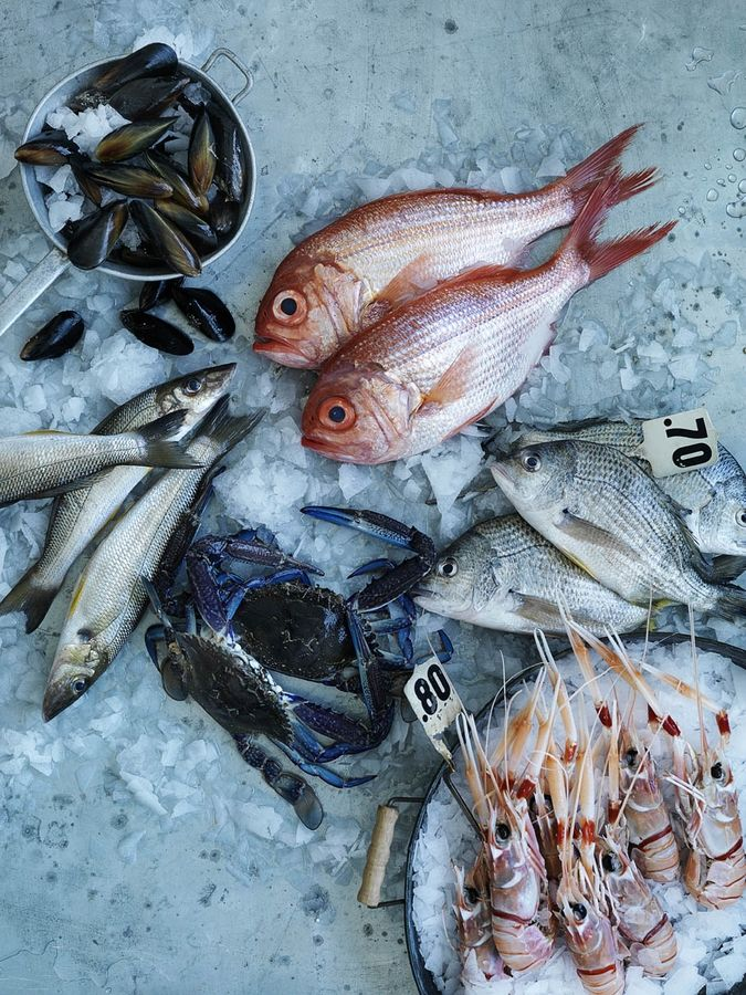 The 25 best fresh seafood market ideas on pinterest for Fresh fish company