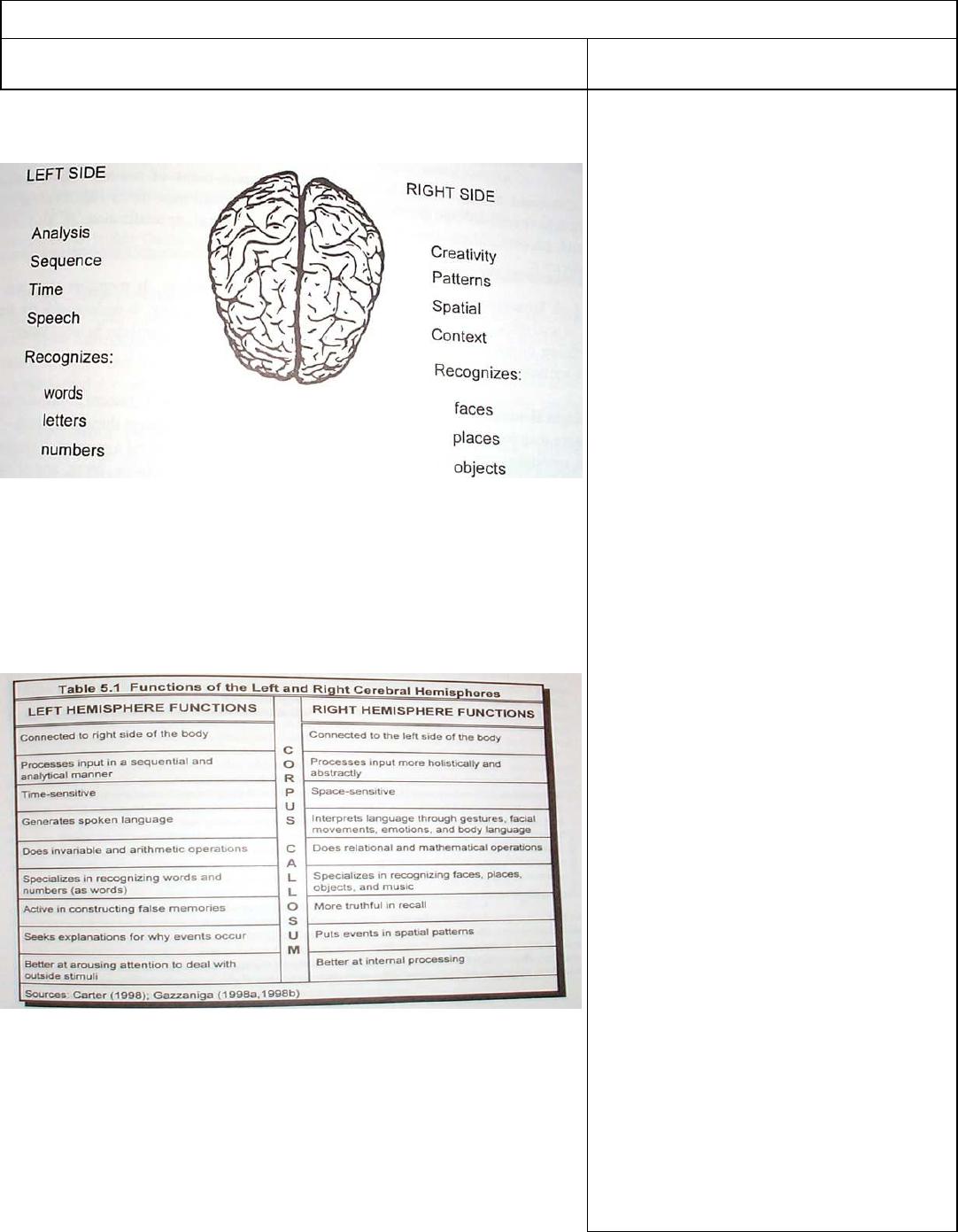 Summary How The Brain Learns 21 Nov