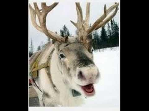 grandma got run over by a reindeer original video