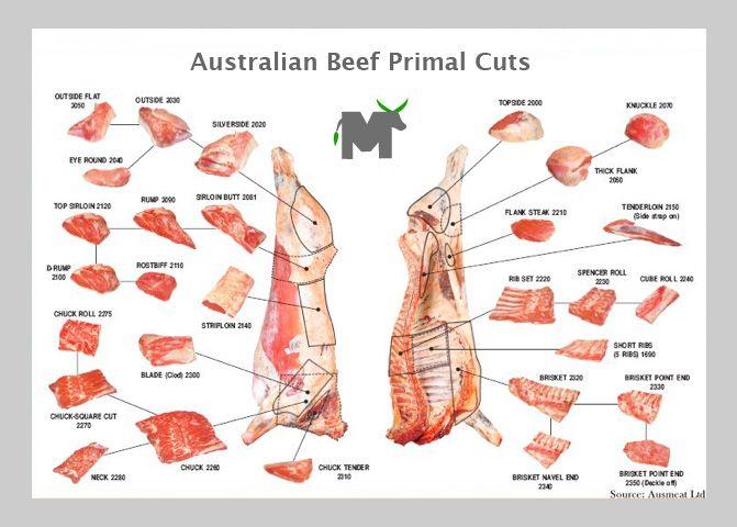 Australian Beef Cuts Diagram Block And Schematic Diagrams
