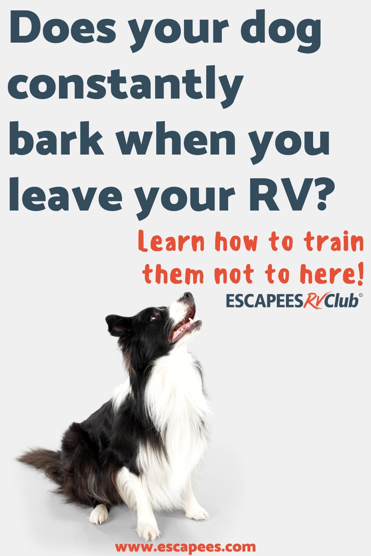 Pin On Escapees Rv Club