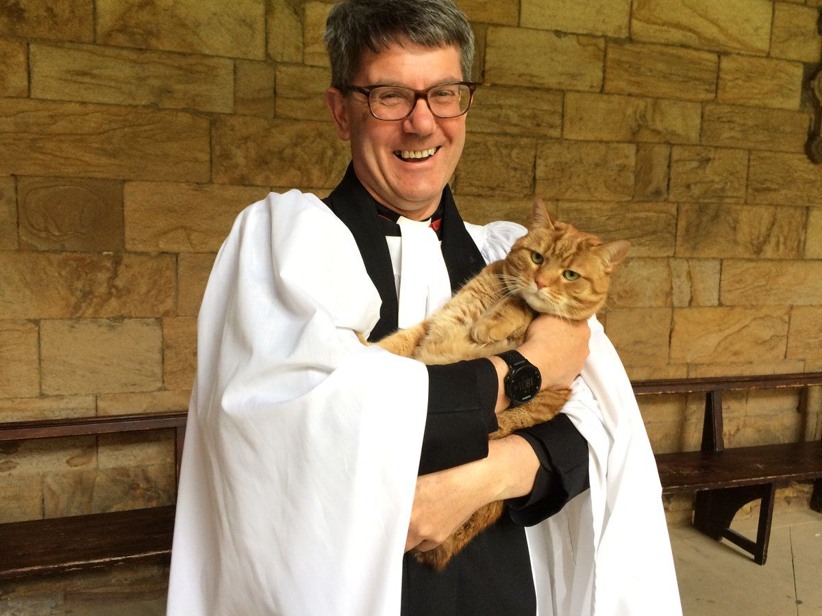 Badger The Durham Cathedral Cat With His Pet Human The Dean Durham Cathedral Cats Badger